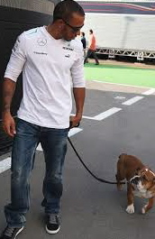 F1 is a dog eat dog world (well hopefully not literally)